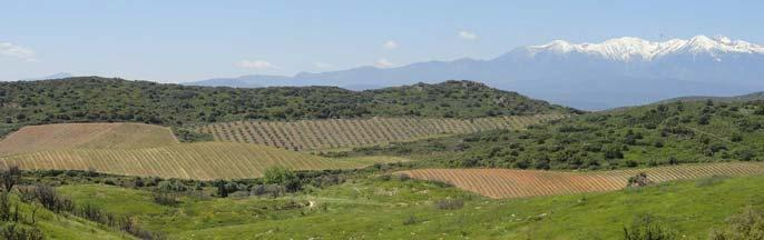 Mas Vell-Roure - Pyrénées Orientales